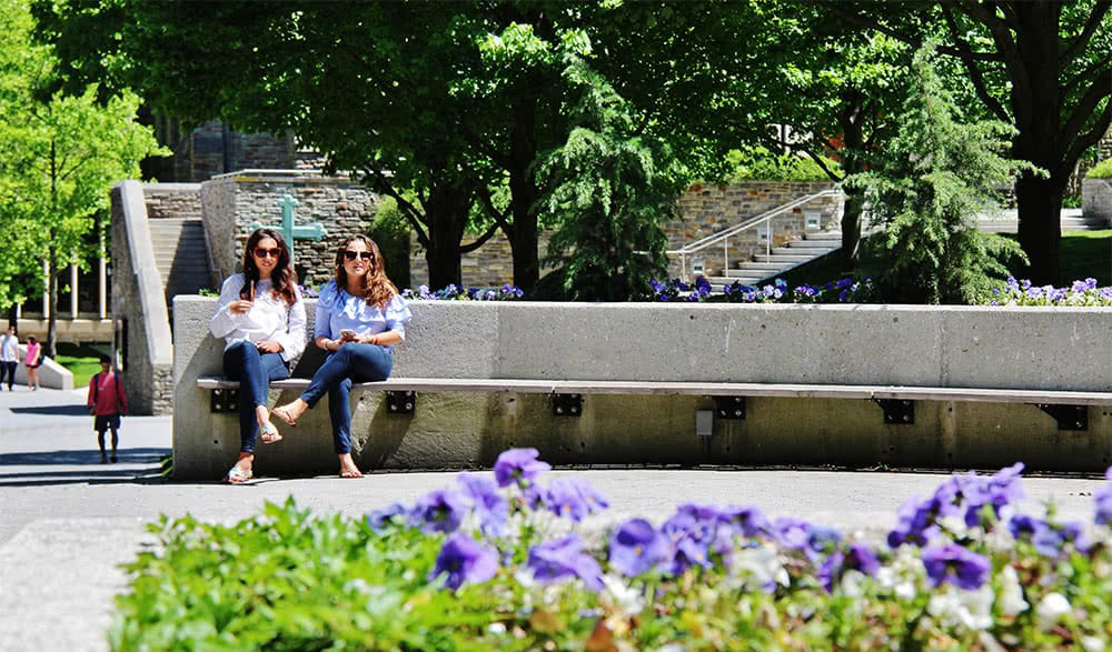 Two students sit on a long bench with flowers in the foreground
