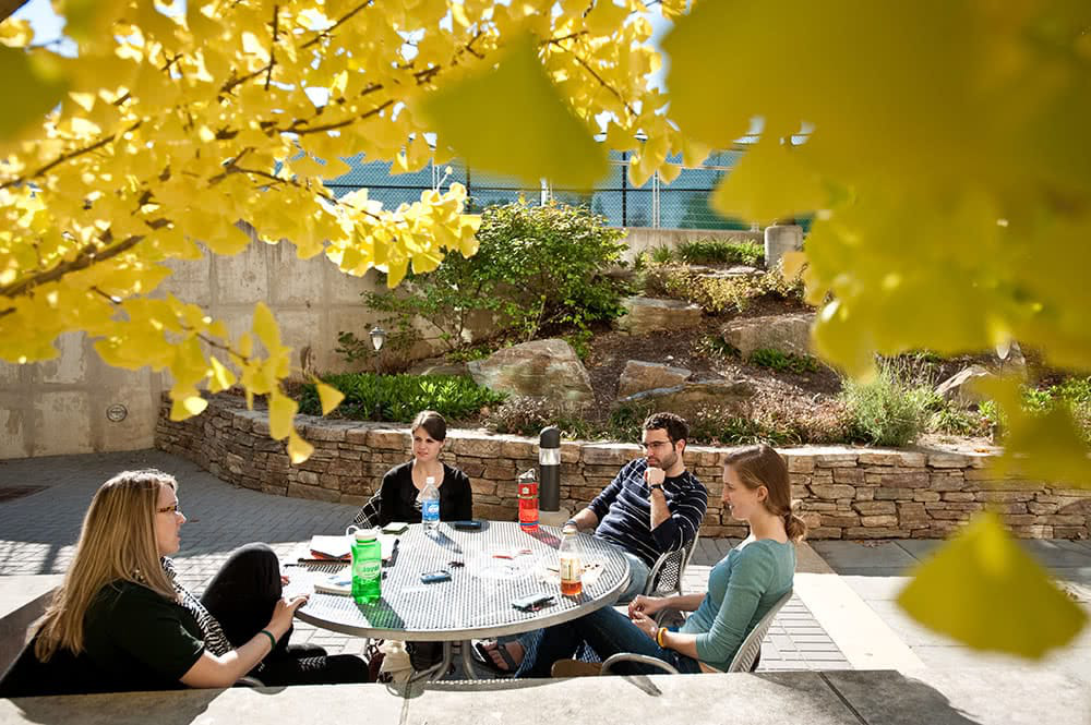 Students sitting and eating around a table outdo要么s, with yellow fall foliage hanging overhead