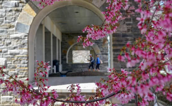 Flowers hanging down in front of an arch, with students in the background